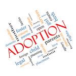 Stepparent Adoptions